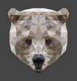 low poly bear head vector image