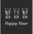 three kinds of alcoholic drinks in shot glasses vector image vector image