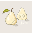 Yellow pear vector image vector image