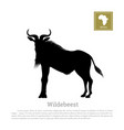 black silhouette of wildebeest african animals vector image