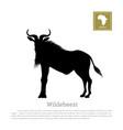 black silhouette wildebeest african animals vector image vector image