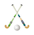 field hockey equipment and small ball vector image vector image