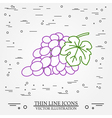 Grapes thin line design Grapes pen Icon Grapes pen vector image
