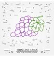Grapes thin line design Grapes pen Icon Grapes pen vector image vector image