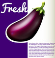 Infographic with fresh eggplant vector image vector image