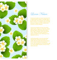 nature banner template with realistic leaves and vector image vector image