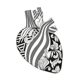 Coloring of heart vector image