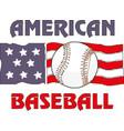 baseball flag usa eps10 vector image