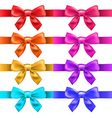 Big Ribbons With Bow vector image vector image