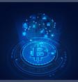 bitcoin technology vector image