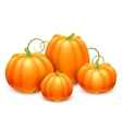 Bunch of Pumpkins vector image vector image