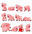 collection cute pig with various posing vector image