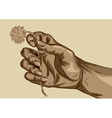 hand holding flower vector image vector image