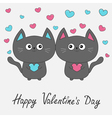 Happy Valentines Day Gray contour cat couple vector image vector image