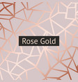 rose gold decorative background with imitation of vector image vector image