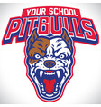 school mascot of pitbull dog vector image vector image
