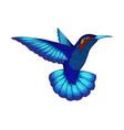 small hummingbird exotic tropical colibri animal vector image vector image