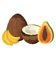 tropical fruit cartoon vector image vector image