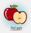 red apple fruits and vegetables vector image