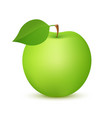 apple fruit green color realistic icon vector image vector image
