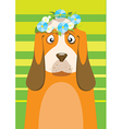 Basset hound with flower wreath on head over green vector image vector image