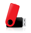 flash drives vector image vector image