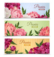 Flower Banners Set vector image vector image