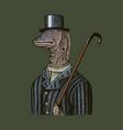 muraena eels gentleman in a hat and suit with a vector image vector image