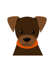portrait of little puppy flat style vector image vector image