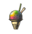 shave ice vector image vector image