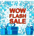Big winter sale poster with WOW FLASH SALE text vector image vector image