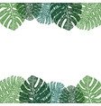 frame of green monstera leaves hand drawing vector image vector image