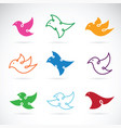 group of bird design on white background bird vector image vector image