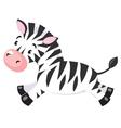 Little Zebra vector image vector image