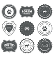 Pets icons Cat paw with clutches sign vector image vector image