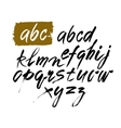 Acrylic Brush Style Hand Drawn Alphabet vector image vector image