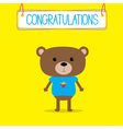 Congratulations card with cute bear vector image vector image