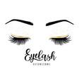 eyelash extensions logo vector image