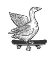 goose on skateboard sketch vector image