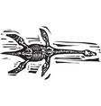 plesiosaurus fossil vector image vector image