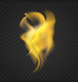 transparent realistic fire flames isolated on dark vector image vector image
