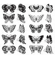 Black butterfly silhouettes vector image