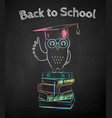 chalk drawn poster owl sitting on books vector image vector image