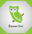 forest owl logo vector image