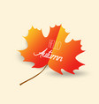happy autumn design with orange maple leaf on vector image vector image