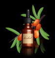 realistic essential oil bottle and seabuckthorn vector image