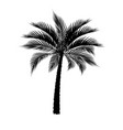 a tropical palm tree in black isolated on white vector image vector image