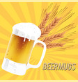 beer mugs glass of beer barley background i vector image vector image