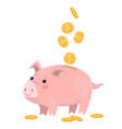 coins and pig piggy bank isolated on white vector image