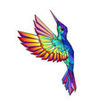 flying rainbow hummingbird vector image vector image